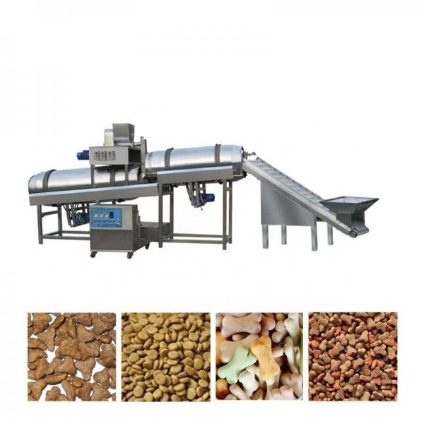 Small Catfish Fish Feed Plant in South Africa