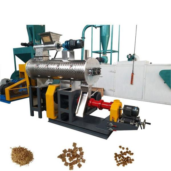 2021 Hot Sale Acm Food Packaging Sheet Extruder Pet PLA PP PS Plastic Recycling Biodegradable Starch Sheet Extrusion Machine